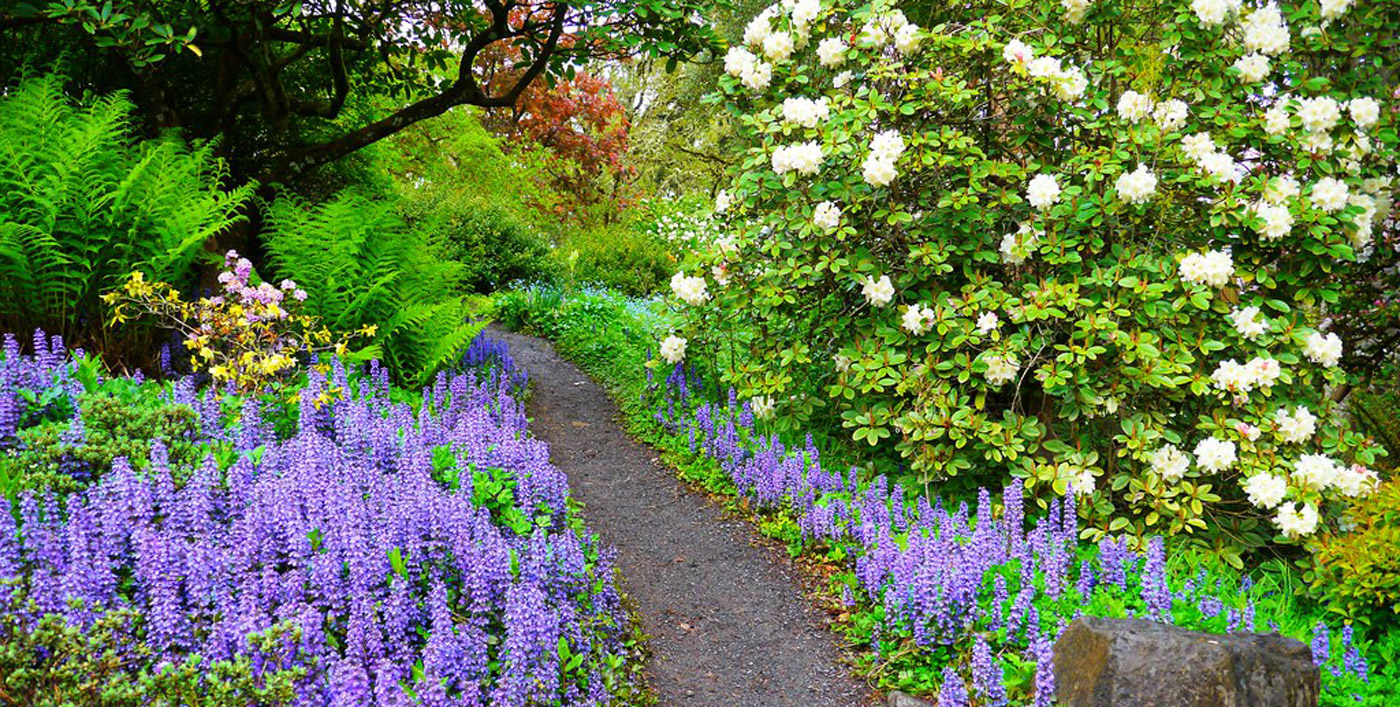 35+ Best Garden Ideas For Small Spaces https://concettadecor.info/35-best-garden-ideas-…   Rock